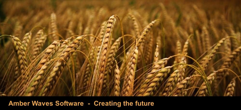 Amber Waves Software - Creating the future